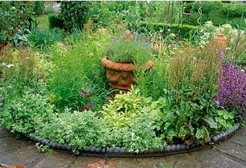 Cómo crear un jardín de plantas aromáticas.