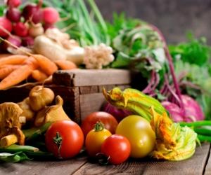 Fitoestrógenos y los alimentos que los contienen.