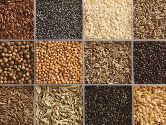 ¿Tiene sentido comer semillas?